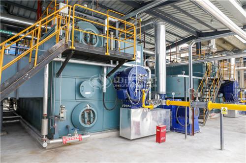 辽阳燃煤锅炉燃气立式排行