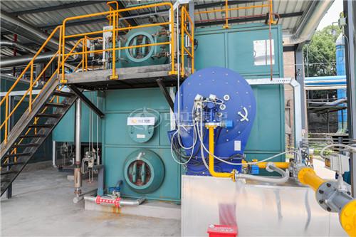 6T大型锅炉厂家
