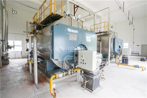 1吨沼气锅炉每小时耗沼气多少立方?