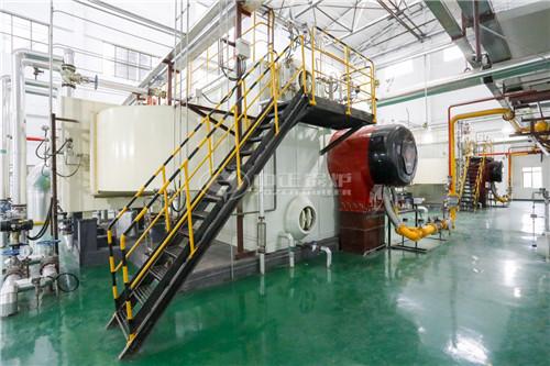 北京锅炉厂95吨酿酒锅炉