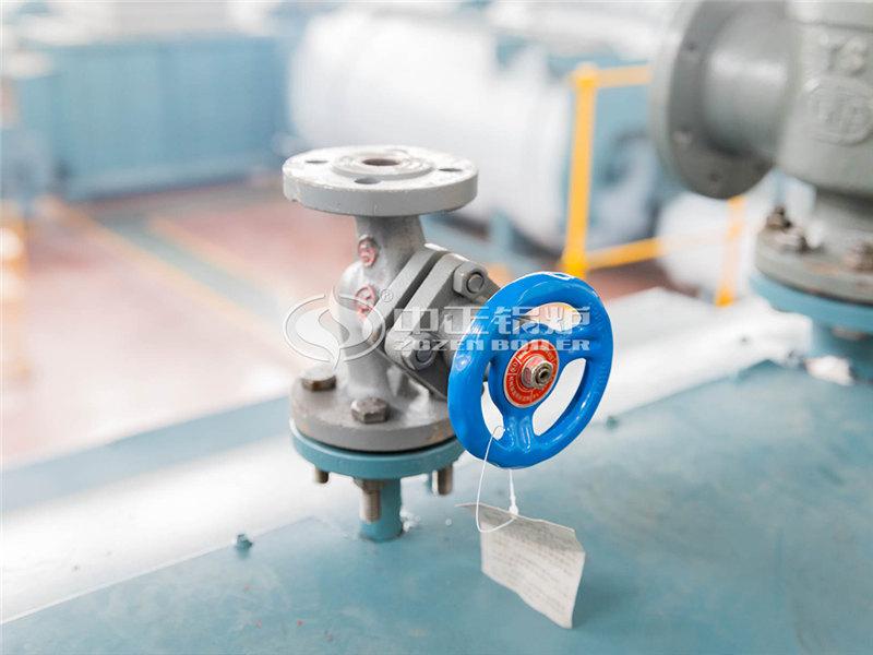 SZL20-1.60-AⅡ节能环保锅炉