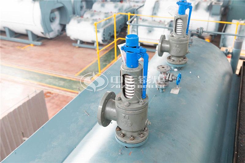SZL10-2.45-M生物质燃料蒸汽锅炉