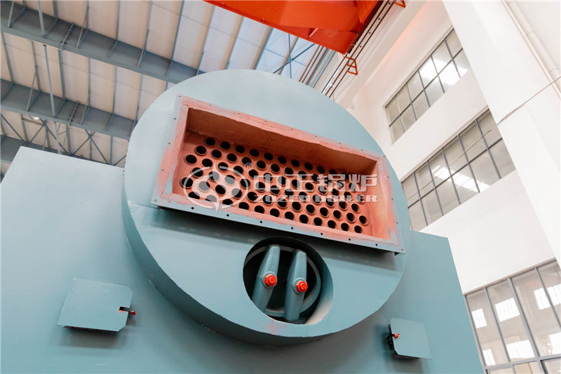 锅炉厂家100吨生物质燃烧锅炉