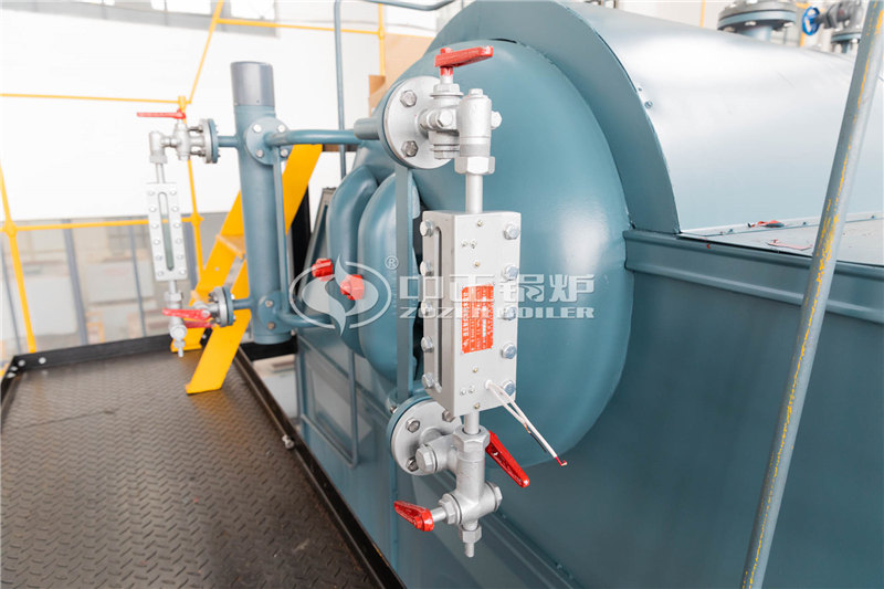 專業加工燃煤洗浴鍋爐