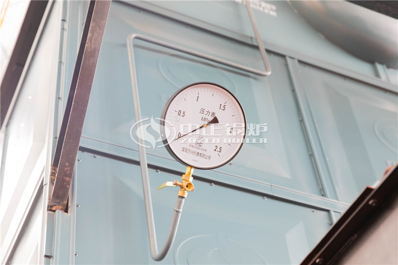 锅炉厂家DZL2-2.45-M工业蒸汽锅炉