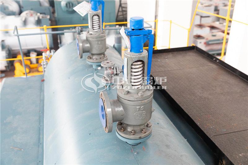 热水锅炉厂家——SZL29-1.25/130/70-All酿酒锅炉