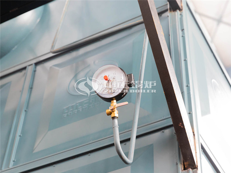 印染行业2吨卧式节能环保燃煤锅炉