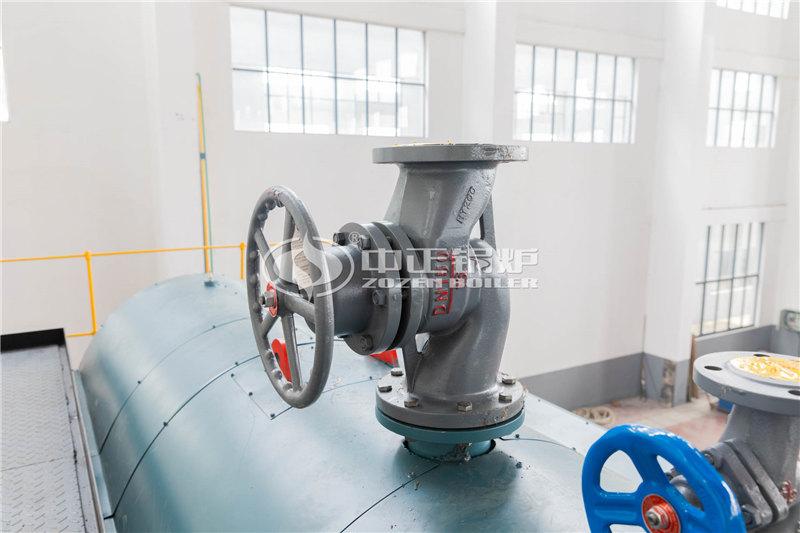 锅炉厂家三十五吨油气两用锅炉