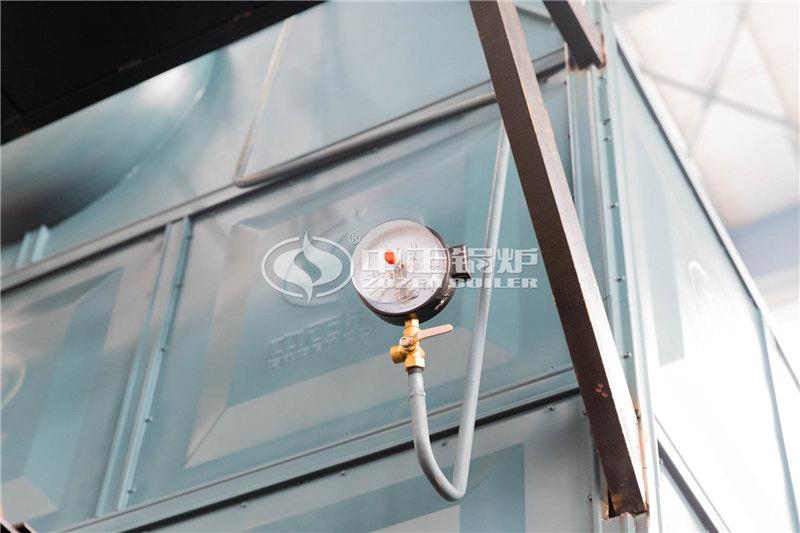 锅炉厂家SHL25-1.25-AⅠ生物燃料蒸汽锅炉