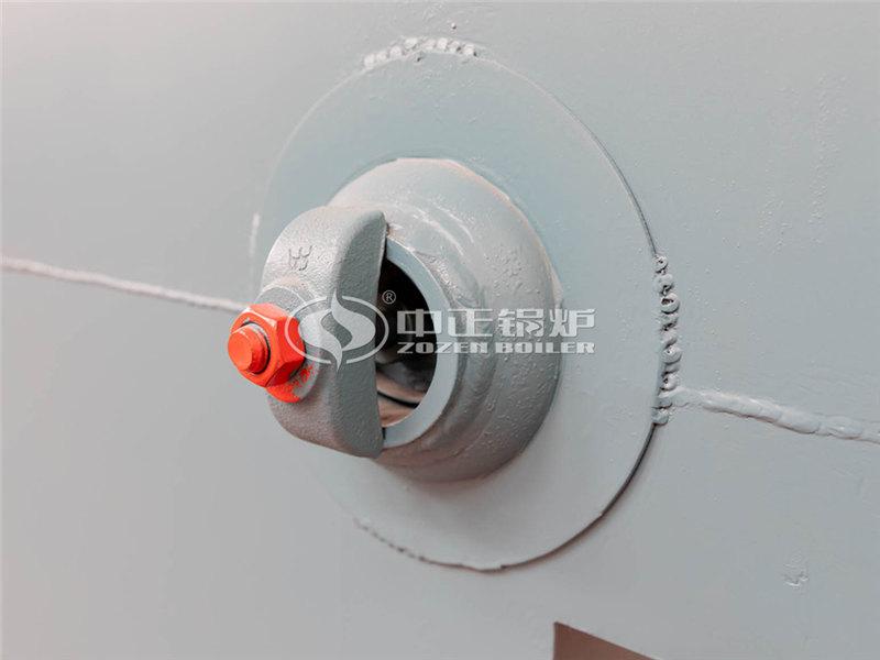 锅炉厂家SHL15-2.50-M生物质直燃锅炉